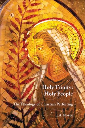 Holy Trinity: Holy People: The Theology ...